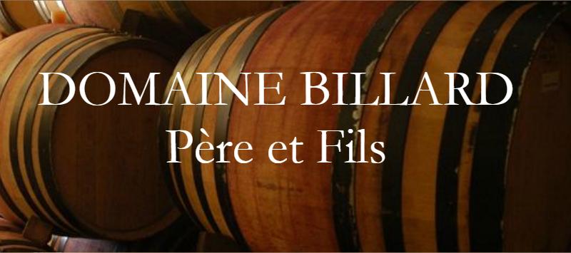 Billard Pere et Fils_logo